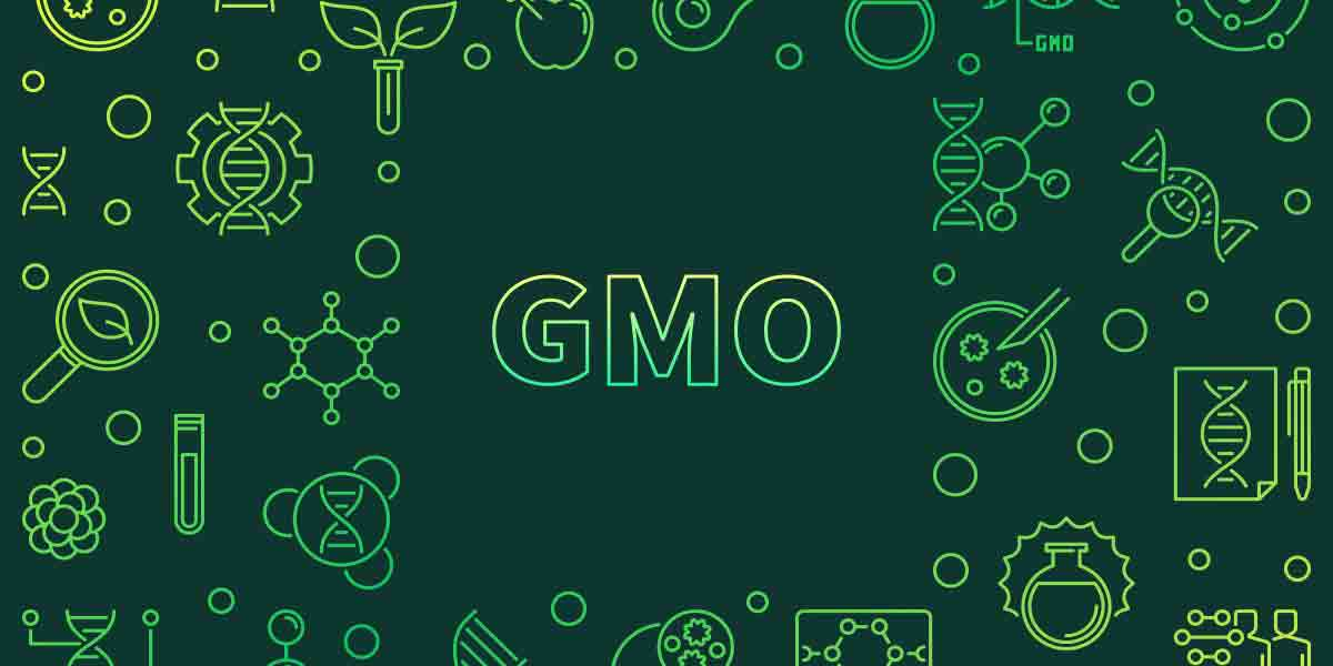 Legislation, passed by Congress on July 29, 2016, will require most food packages to carry a text label, a symbol or an electronic code readable by smartphone that indicates whether the food contains GMOs.