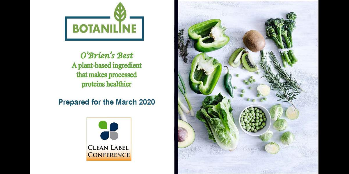 2020 Technical SnapShot BOTANILINE OBRIENS BEST POTATO INGREDIENT