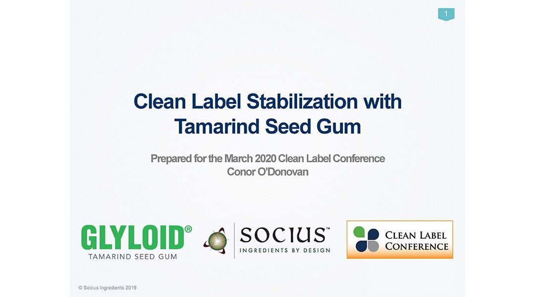 Socius Ingredients GLYLOID Tamarind Seed Gum
