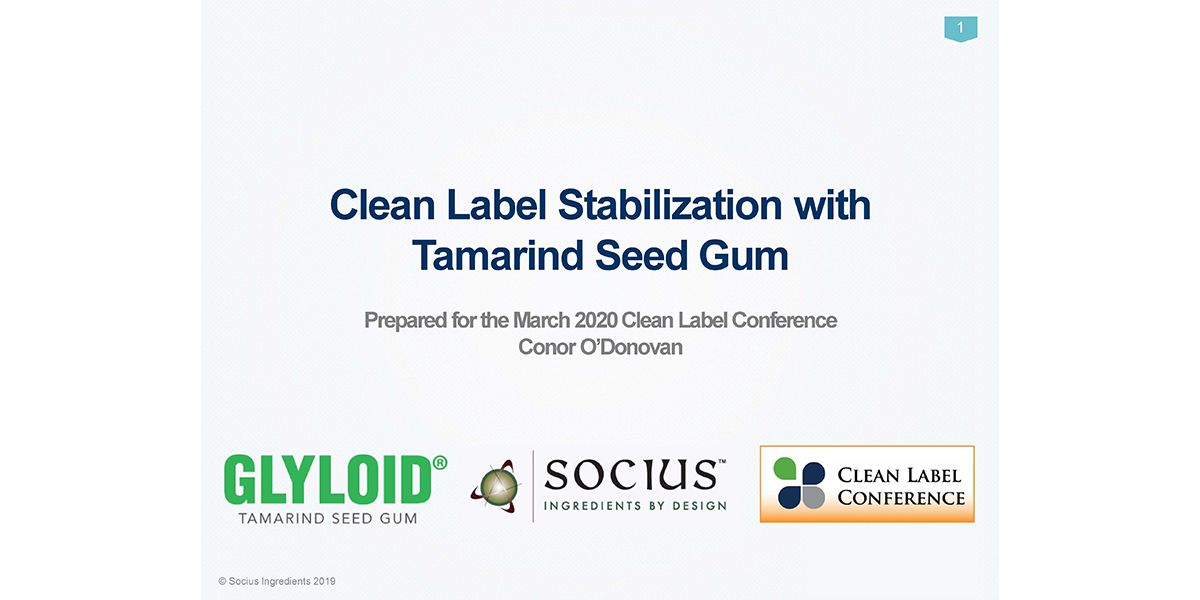 2020 TSS SOCIUS INGREDIENTS GLYLOID TAMARIND Seed Gum