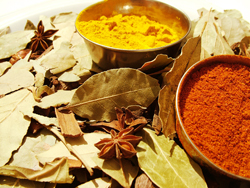 Photo of organic spices and herbs