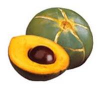 photo of the fruit lucuma