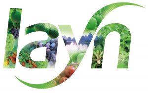 Layn Logo